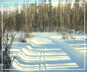 Nordic Trails
